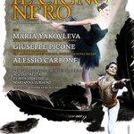 @Twiperbole 26 feb ore 21, Bologna - Teatro Europa Auditorium il gran gala IL CIGNO NERO http://t.co/Eit8npiLkE http://t.co/aRwwTTrC36