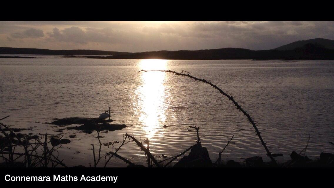 Swans at #Sunset #Cloonisle #WildAtlanticWay #Connemara @DiscoverGalway @Failte_Ireland @renvyleweather http://t.co/LuvBiPjzT6