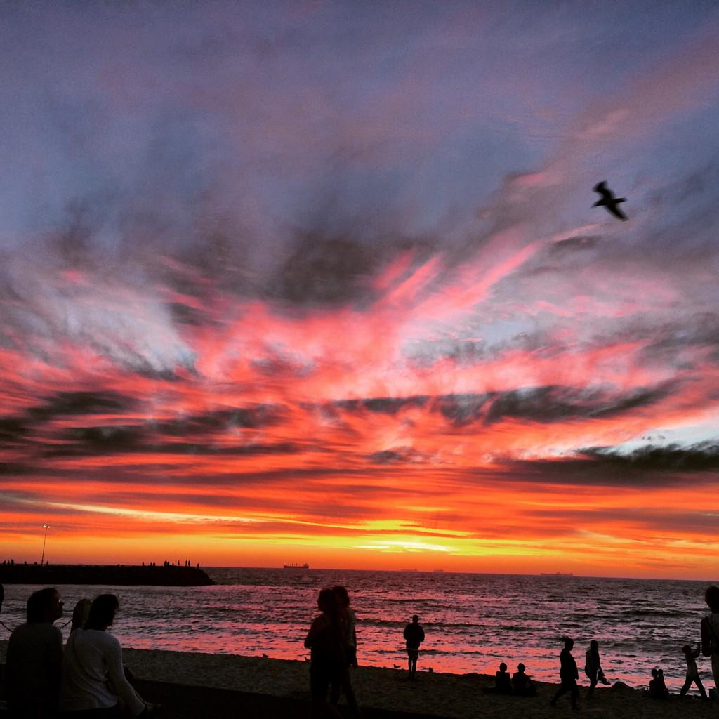 @RyanNorthover: Sunset last night was pretty spectacular @tweetperth #perth #cottesloe http://t.co/QkVwMDoId9