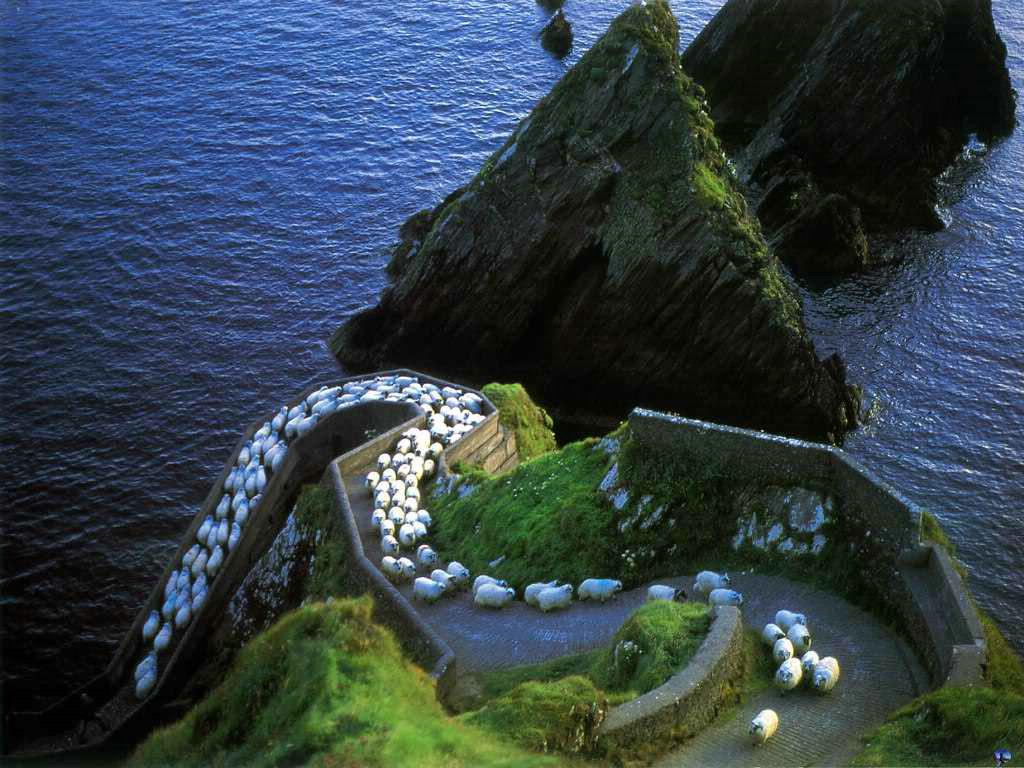 25 things to do in Ireland before you die! via @IrelandB4UDie Woot! We've done 16!