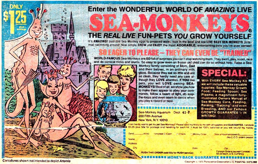 NEW! @aevalente on the commercially fraught, existentially intoxicating story of Sea Monkeys: http://t.co/HIkcao3gKv http://t.co/O9o5yzBJ31