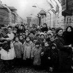 1945 год. #Дети Освенцима, спасённые Красной Армией http://t.co/E2KCgXSved
