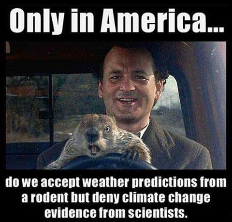 Only in America do we accept climate predictions from rodents, but deny #ClimateChange from scientists. #GroundhogDay http://t.co/JGdMj1OcPf