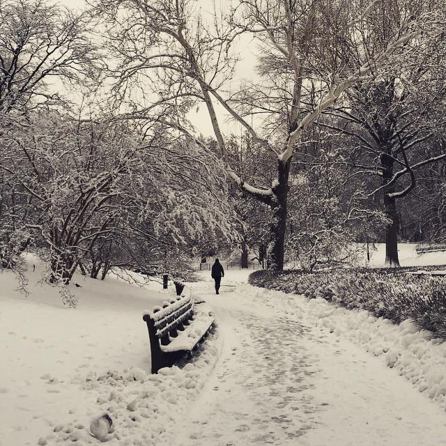 This is a color photo of Central Park this afternoon. #nofilter http://t.co/sIRNGYgJlB