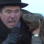 Mayor gets the weather report and possibly rabies on Groundhog Day. http://t.co/iOjrBE8Etr http://t.co/Y91Xqk1hPZ