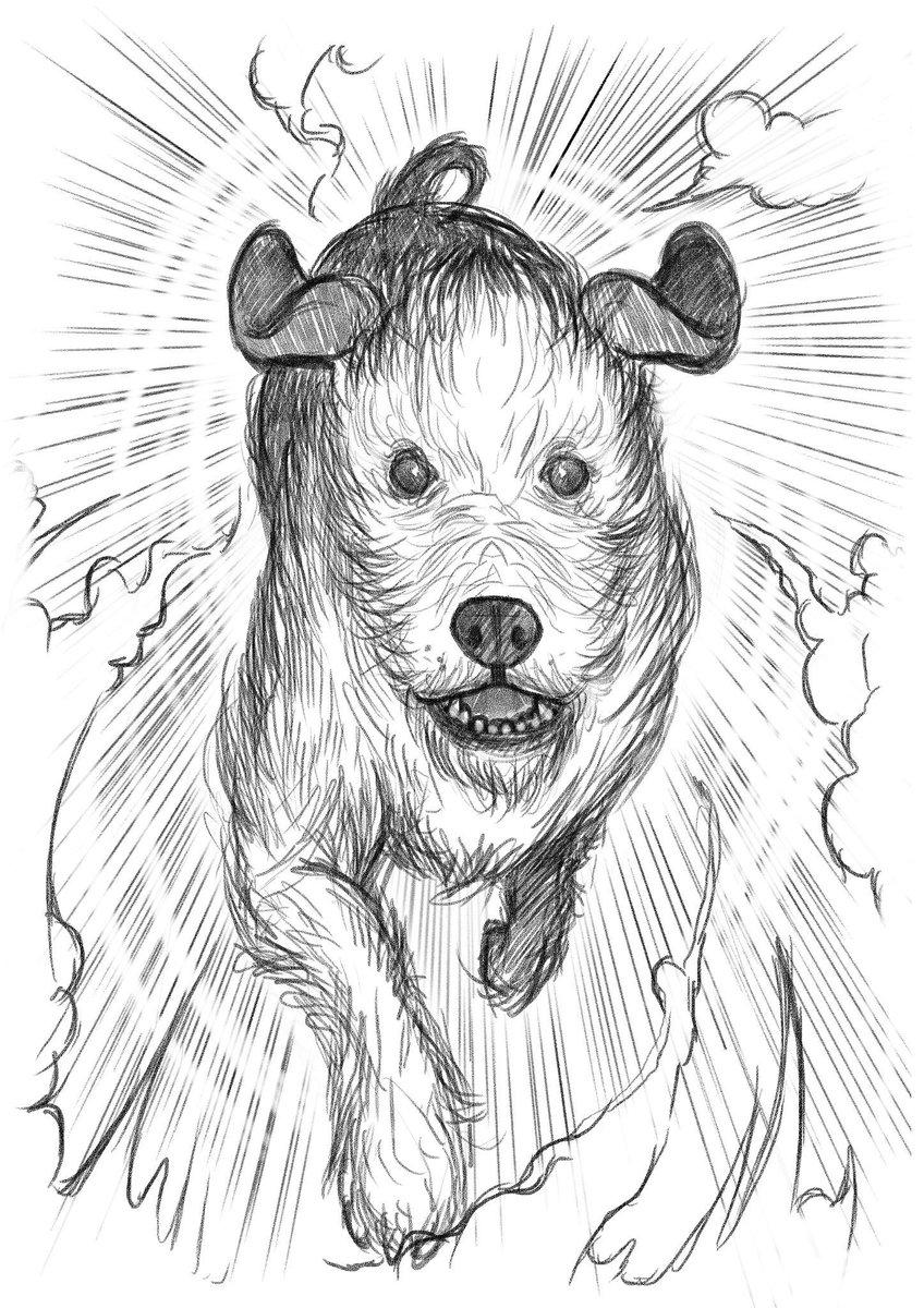 Woof - time traveller dog https://t.co/xwgqOUvpl6  #amreading #kids #fairystory https://t.co/PqRKR1uWKa