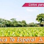 El campamento de Jóvenes más grande del Perú está listo para recibirte #YoVoy al #CampJAUPN y tú? http://t.co/XPF2ts4ivV