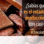 ¡#Tabasco es el estado de mayor producción de cacao! #ChocolateMexicano http://t.co/lPk0d0wVKs