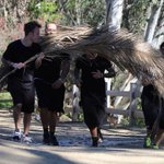 God bless Ryan for hiding Justin behind a palm tree so Paparazzi wont bother him #OurJustinChangedOurLife http://t.co/3gVZ1N16k8
