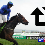 RT if you want Hurricane Fly to win a 5th Irish Champion Hurdle today. http://t.co/Vq58knnaJD