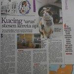 Kucing urus stesen kereta api. Me main twitter 24j http://t.co/XaxVBBbiDA