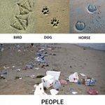 Footprints. #human #environment http://t.co/RDuZZghEvZ http://t.co/tFqxI0dreD
