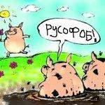Цей шторм, приносить чудових людей для фоловінгу) #BanRussiaFromSWIFT #FreeSavchenko #WorldwakeupRussiainvadedUkraine http://t.co/KJwRvw1cVs