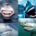vamos rir de quem tem aula amanhã http://t.co/Nhwx9XIKb8