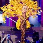 El traje típico de Venezuela está inspirado en el árbol nacional Araguaney, diseñado por Nidal Nouaihed. http://t.co/HbBRgWWHsa