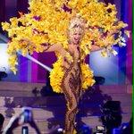Me encantó el traje típico de @MigbelisLynette. ¡Vamos Venezuela! #MissUniverso2015 #MissUniversoTNT #MissUniversoVV http://t.co/MdQ4uGyv9U