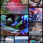多くのフェロー諸島の住民はゴンドウクジラ肉を食べなくなっている #STOPイルカ猟 http://t.co/Why4FOgUno http://t.co/zmCuiMUmZy @2011yukino