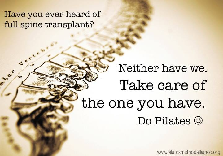 Have you ever heard of a full spine transplant? Neither have we. Take care of the one you have. Do #Pilates http://t.co/8Zg4Yrok1a