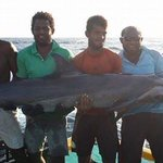 Not a trophy! But shame! #dolphinlover #DolphinProject #Maldives http://t.co/jTNyUwlqCr