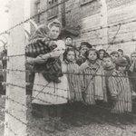 """RT @martasolano_tve: RT @la2_tve:27 de enero,70 años d la liberación d #Auschwitz donde murieron 230 mil niños http://t.co/Bodv3SnF3C"""""""