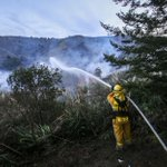 Rainless January giving rise to summerlike conditions, threat of wildfire. http://t.co/RMy7i7kaMq http://t.co/WebH4hwUc5