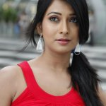 Radhika Pandit will be playing female lead in Puneeth Rajkumar - Duniya Suri's #DodmaneHudga.  http://t.co/cHylwptyCF