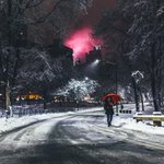 The best of the blizzard in Instagram photos and Vines: http://t.co/lrXymDgCqN http://t.co/lZact31Tou