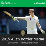 The Test Player of the Year is awarded to @stevesmith49! Watch LIVE: http://t.co/a86RM9ylC1 #ABMedal http://t.co/E4iJU96cRC