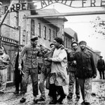 70 лет назад Красная Армия освободила узников Освенцима http://t.co/0nI4nwrb7P