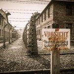 70. Jahrestag der Befreiung von #Auschwitz. Entdecken Sie jetzt Biografien zum Thema: http://t.co/rOrJ5sIm82 http://t.co/xTrarFNz2l