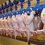 Беларусь временно ограничила поставки птицы из Японии и США http://t.co/XMmfVtHyQw http://t.co/4NIiJ8RVzF