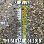 Get the shovels. #startdigging #Snowmageddon2015 RT @JosephMRyan1 @eavesdropann @lovusa4 @blackdawgg @catydoodle LOL http://t.co/7Xt0BaLtyy