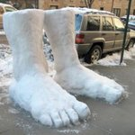 2 feet of snow in New York #Snowmageddon2015 http://t.co/pH1kXqJqW8