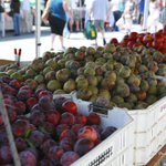Midtown Ventura Farmers' Market tomorrow from 9am-1pm http://t.co/dg8udz8Jh5 http://t.co/UBOv2WiuUo