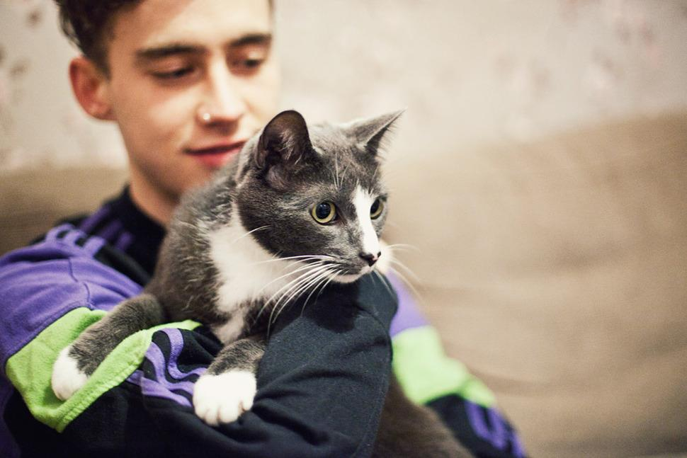 Acts and their Cats: Years & Years http://t.co/E5FRJNXBN8 http://t.co/VvS55uGspe