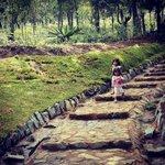 En las montañas de Medellín estamos construyendo el #JardínCircunvalar: más espacios para el disfrute de la vida. http://t.co/GQ1NEEKhgM