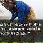 Twitter / @MongareM: @JulieGichuru @WFP @WorldB ...
