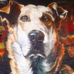 Twitter / @repubblicait: Loukanikos, il cane anti-T ...