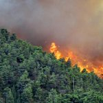 Alert over forest fire in Aberdare, Mt Kenya area http://t.co/uqaOHAEOzd http://t.co/2lTeukWOME