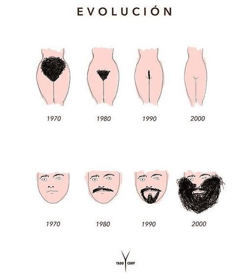 El pelo no se crea ni se destruye, solo se transforma  v/ @gurusblog @reasonsto http://t.co/n5vsdzOxWs
