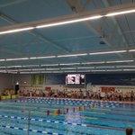 Zwols Kampioenschap Schoolzwemmen. De toppers van Het Festival zwemmen geweldig en gaan voor de prijzen! http://t.co/XjCjbBdkW8