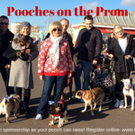 Support @martletshospice sponsored dog walk #PoochesontheProm on 8th Feb - #Brighton & #Hove http://t.co/u57q9Pjaiv http://t.co/EwNPV9OpwG