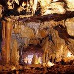 Crânio de 55 mil anos sugere que os primeiros humanos europeus viveram em Israel http://t.co/SKFKjlvstF http://t.co/yq1BRRkz6Q
