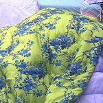 #BBB15: Acho supernatural, diz pai de Aline sobre ela ficar no edredon com Fernando. http://t.co/p0c0eRjnF2 http://t.co/9hEWd0wblQ