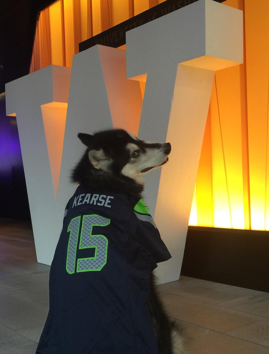 Dubs @UWMascot is ready for #SuperBowlXLIX & more winning plays by his fave @Seahawks player, @UW alum @chopchop_15! http://t.co/ImAt92SUga