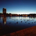 Gorgeous night in Denver at City Park #cowx @KDVR http://t.co/33DfGtpePd