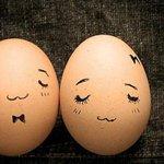 【すげぇ】米の科学者がゆで卵を生卵に戻すことに成功 http://t.co/G0IfXbbOTd タンパク質を変性させて本来の構造にする方法を確立したそうです。 http://t.co/kmNJQ72D0A