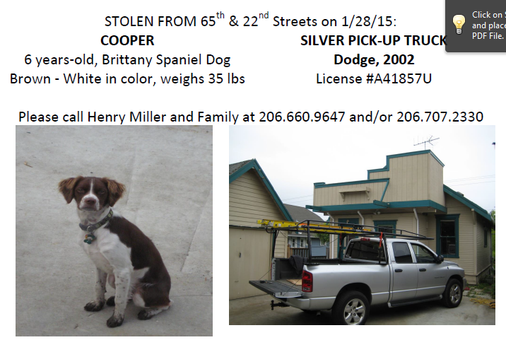Help find Cooper! 6 yo Brittany Spaniel was inside his dad's truck when it was stolen #liveonkomo http://t.co/Bp0T0PMGSx