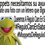 30 Queremos a @regulocaro en @sabadazooficial #MoppetsDeReguloCaro #ReguloCaroEnSabadazo @moppetsdeRC http://t.co/QPA5aJdjiu