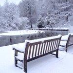 Nice weather for ducks? Snowy Forge Dam park, #Sheffield. #thestarsnow http://t.co/XTYJWXleGv